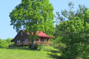 Bland Cabin may 2013