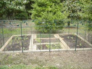 Garden with gate