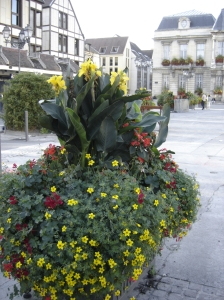 Troyes - Flowering pots