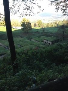 Orvieto - Etruscan tombs