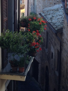 Orvieto - view from window 2